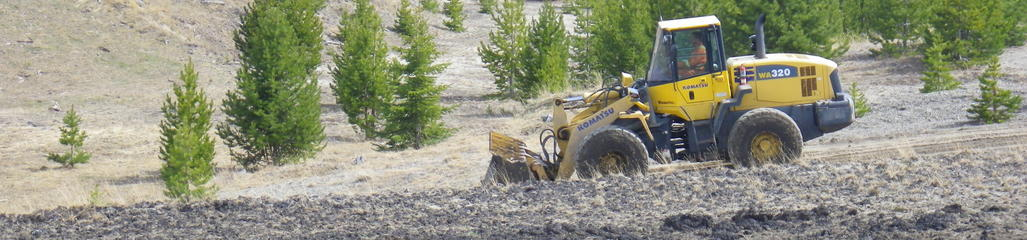 A SYLVIS qualified professional authored a land application plan to enable biosolids use in gravel pit reclamation.