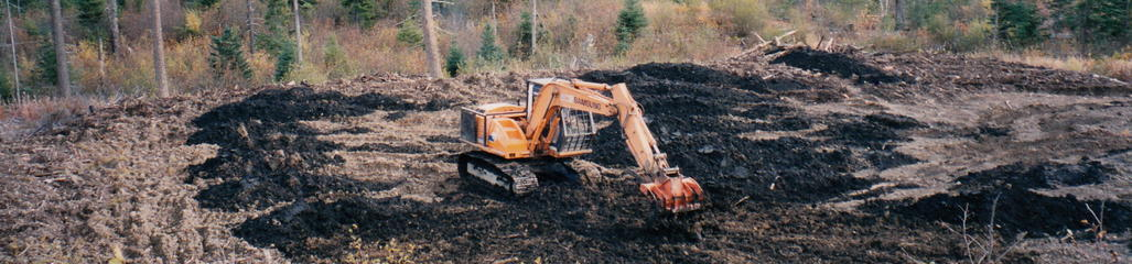 Pulp and paper residuals are combined with biosolids to create a soil amendment in the reclamation of forestry roads and landings.