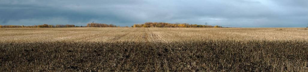 We work with landowners to ensure the application of residuals meets land and crop management objectives.