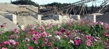 SYLVIS has designed and implemented mine reclamation projects using residuals for over two decades.